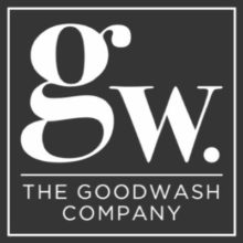 Vi-Ability Wales Goodwash logo